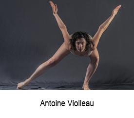 Antoine Violleau site artlabs