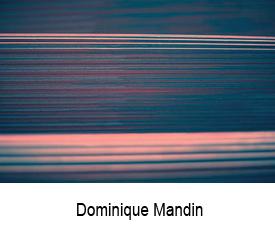 Dominique Mandin site artlabs