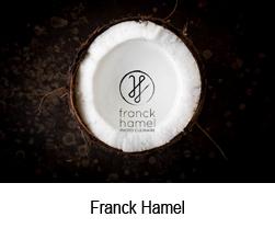 Franck Hamel site artlabs