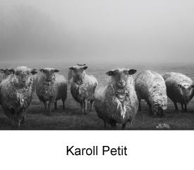 Karoll Petit1